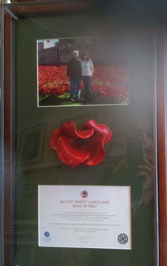 ceramic poppy framed